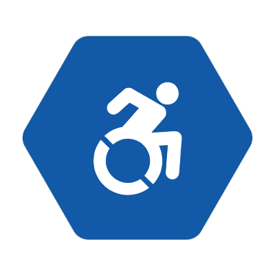 disab_icon