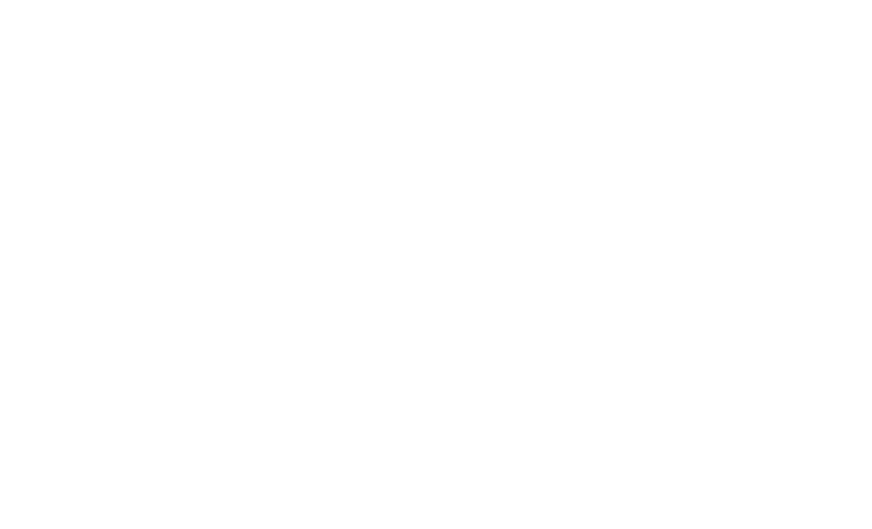 logo_BVM v2