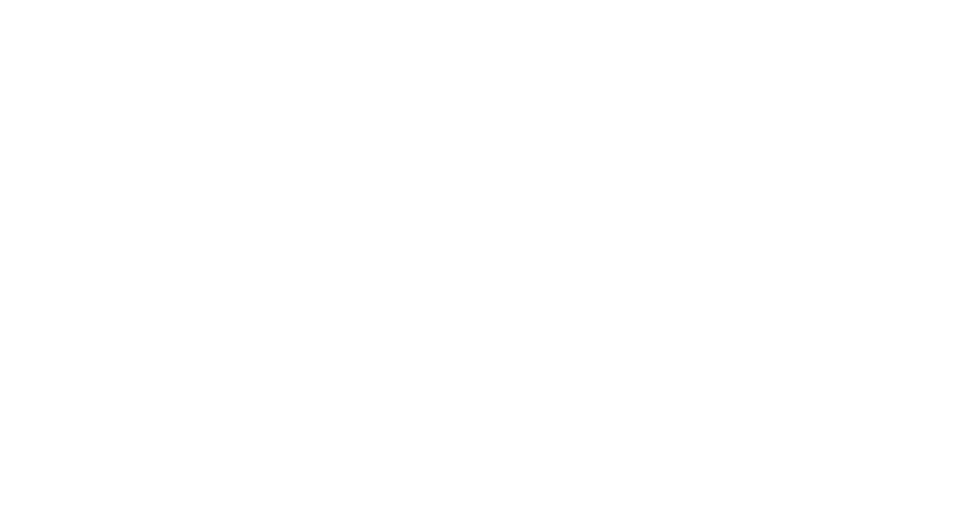 LOG_BVM_2020_BRASOV_MARATHON